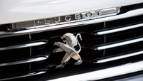 Peugeot grille BB web_0.jpg