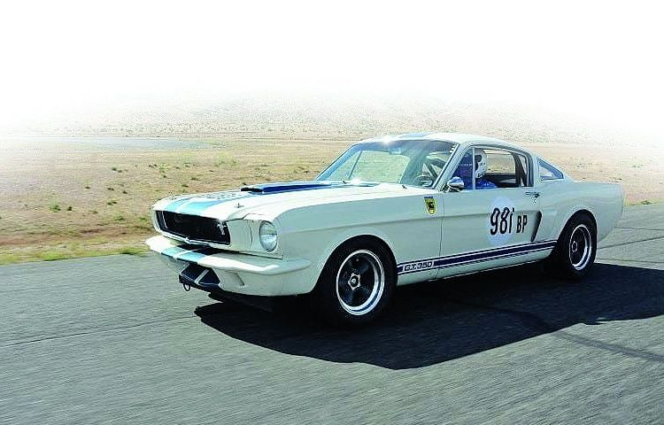 The 1965 Mustang Shelby GT350 reigned supreme in the Ford Frenzy tournament.