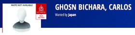 Interpol's Ghosn image, above. One of our many photos of Ghosn, below.