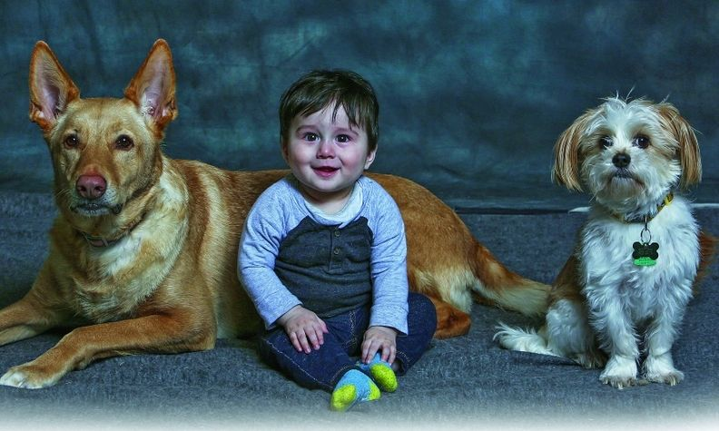 Bergstrom Subaru of Green Bay's grand opening featured free photos for two- and four-legged customers.