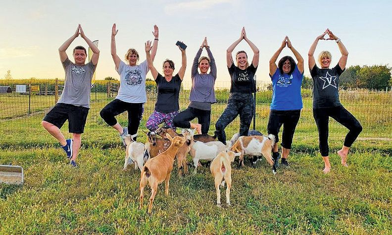 Fred Beans Automotive Wellness Coordinator Andrea Volm, center, leads a goat yoga session that included group Vice President Beth Beans Gilbert, far right.